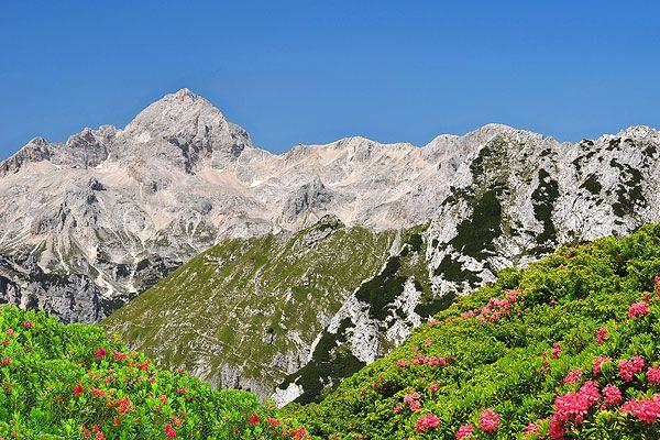 A Júliai Alpok Szlovénia legmagasabb és egyben legnagyobb hegyvonulata. Legmagasabb csúcsa a 2864 méter magas Triglav hegy. Télen síelők, nyáron a kirándulók, kerékpárosok és az aktív, sportos nyaralások kedvelőinek egyik kedvenc célállomása. Ha kedvünk van egyik nap túrázhatunk, másnap pedig leugorhatunk az Adriára fürödni.