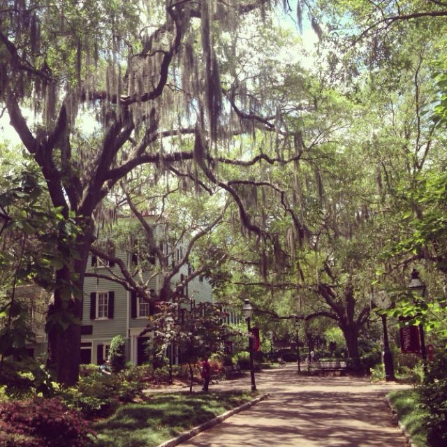 The College of Charleston on a lovely May afternoon