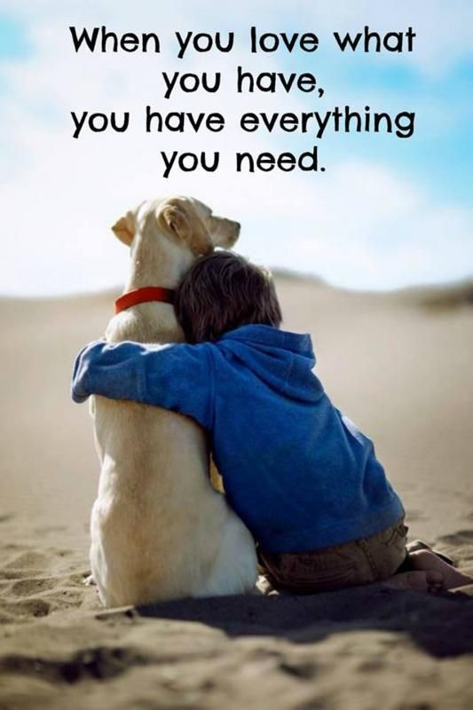 When you love what you have, you have everything you need. Picture Quotes.