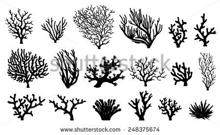 coral silhouettes on the white background - stock vector