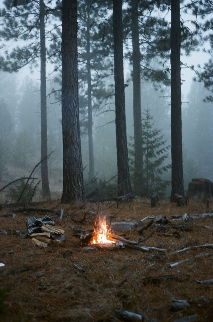 Happy Memories of camping as a child & sitting around the fire with my Daddy.