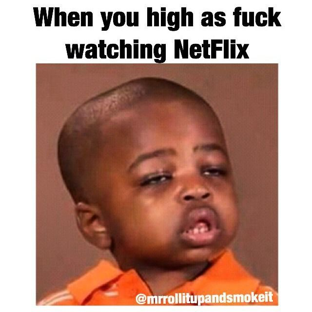 e85803d8327a3bc2748901fb300ed176 weed memes weed humor 281 best the high life images on pinterest funny weed memes, weed