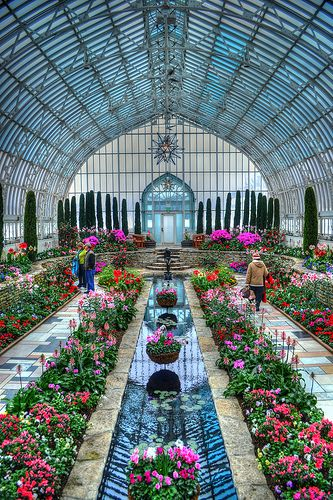 Marjorie McNeely Conservatory - St. Paul, Minnesota USA.  photo by LizNemmers