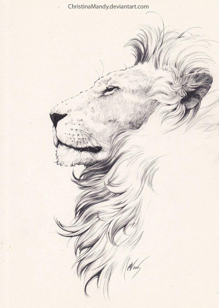 b2925923995bae954a6d39805d9985ef--lion-side-tattoo-lion-flower-tattoo.jpg 736×1,037 pixels