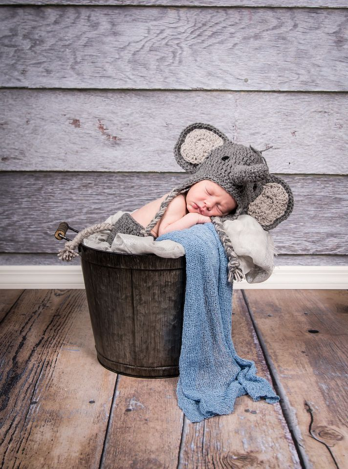 Newborn Photography with crochet elephant hat