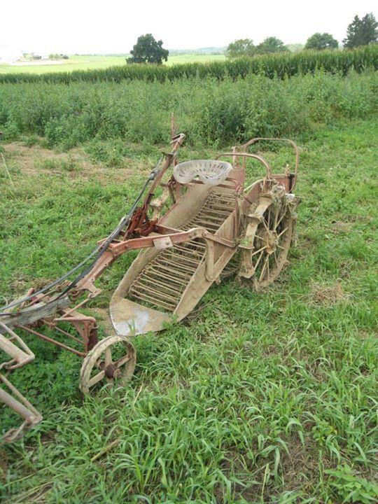 Amish potato digger