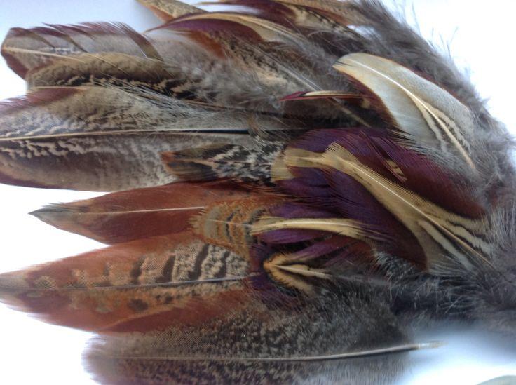 20 gesorteerde prachtige veren fazant-veren van Fazantenhaan - 7 tot 15 cm -1598 door DeKeukenVanHegge op Etsy
