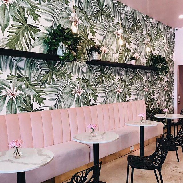 WEBSTA @ arianalauren - happy friday💕...craving their avocado toast and matcha lattè right now! anyone else dealing with the power outage in sf right now?! feeling a little lost without internet right now! #matchalatte #sogood #sandiego