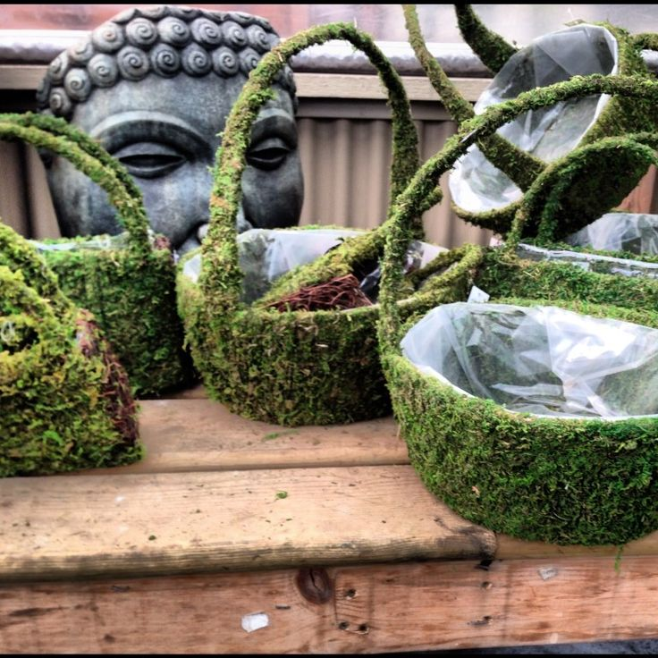 Moss baskets. Someone finally combined my two loves.