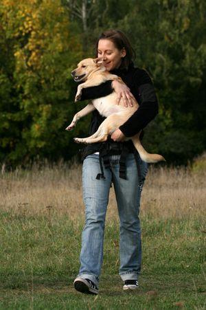 Easy Dogs / Warum einen Hund aus dem Tierschutz?, Claudia Matten, FRED & OTTO Stadtführer Mittelfranken
