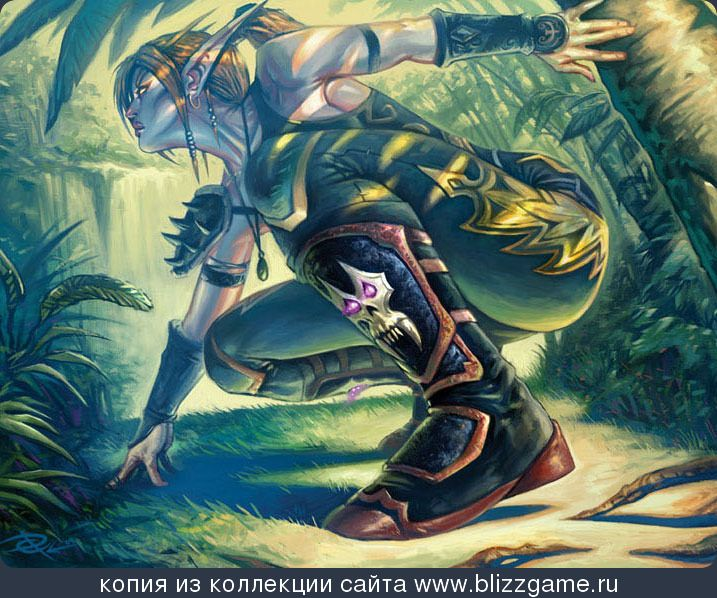 54 Best Images About Night Elf Rogues On Pinterest