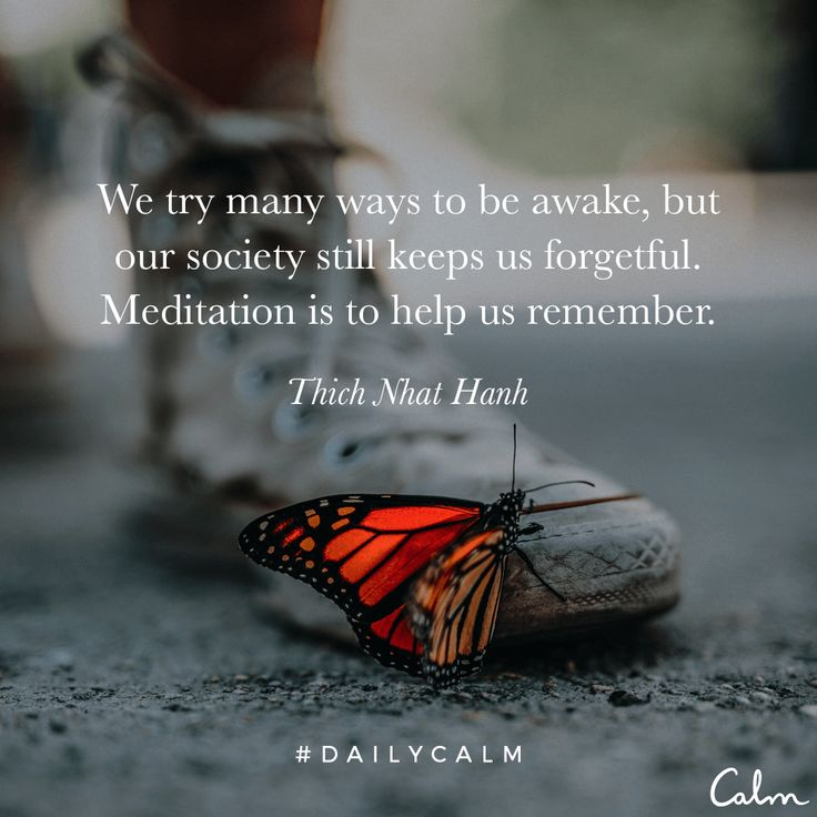 We try many ways to be awake, but our society still keeps us forgetful. Meditation is to help us remember. Thich Nhat Hanh