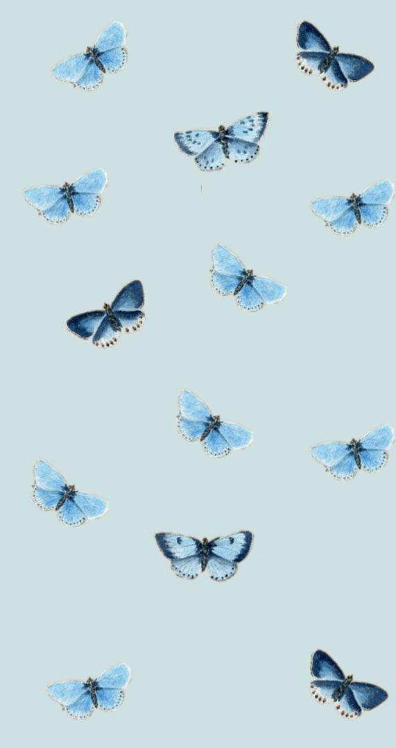 Pin by Isterr on Wallpaper   Blue butterfly wallpaper ...