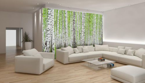 Wall Murals Wallpaper Coverings Decorations Non Woven Home Art Birch Trees 157VE | eBay