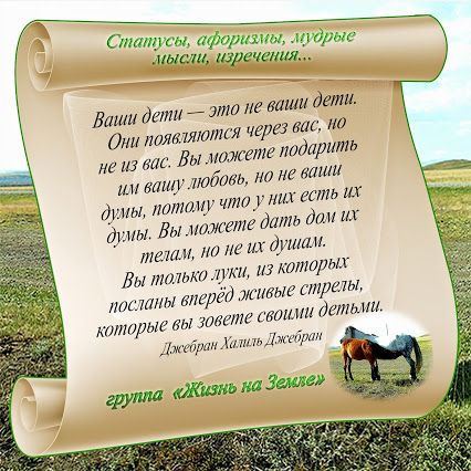 Альфия Лукманова – Google+