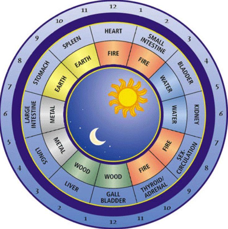 [3c] Circadian Rhythm Clock