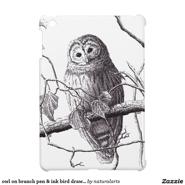 owl on branch pen & ink bird drawing iPad mini cover