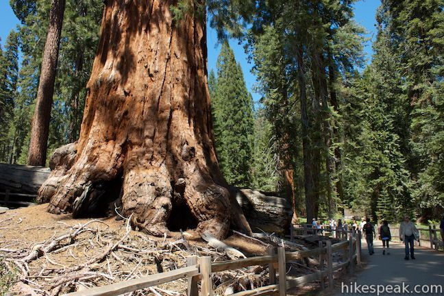 Trails in Kings Canyon National Park listed by name, distance, and location with links to complete information on each day hike or backpacking adventure.