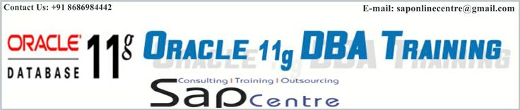 SAP Centre is the best leading Online Training Institute in the World we are providing ORACLE 11G DBA Online Training with efficient SAP professional trainers. Everyone says this about their Institutes but they many not reach your expectation because they have not efficient resources like professional trainers and materials related to the course. We have more than 10 years experienced professionals.  Web: http://www.sapboonline.com/oracle-11g-dba-online-training/