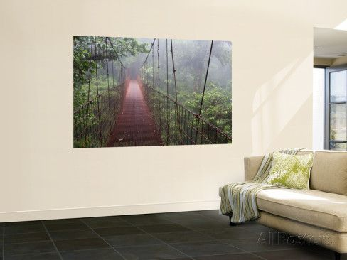 Cost Rica Monteverde Eco Tourism Canopy Walkway in Cloudfores Wall Mural by Christer Fredriksson at AllPosters.com