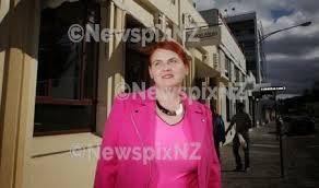Mary O'Neil, Napier, Alliance Party NZ