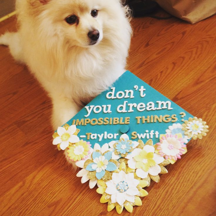 Finally finished with my grad cap! had to feature taylor swift!