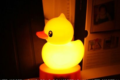 A special gift, yellow duck touch light, in the night time, just touch the yellow duck, then she will light up your room, give you warm.  Third gear adjustment. Four AAA batteries. An USB port to connect a computer at one end, with no power cord.  BUYNOW with FREESHIPPING at http://www.inspirelifeakl.co.nz/lightupyourlife