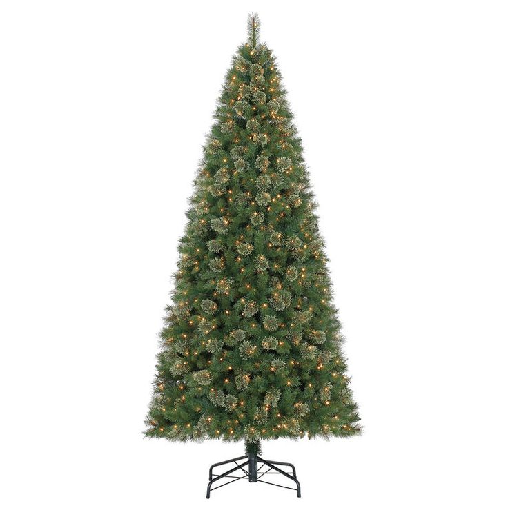 C28 10 Ft Pre Lit Anderson Fir Christmas Tree With 1000 Clear Lights Fir Christmas Tree Christmas Tree Classic Christmas Tree