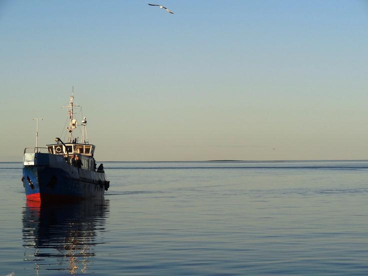 Beloje more