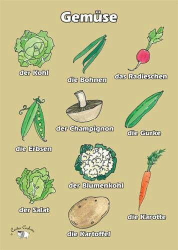 Das Gemüse Quero aprender retornar professora de Alemão, Danke.