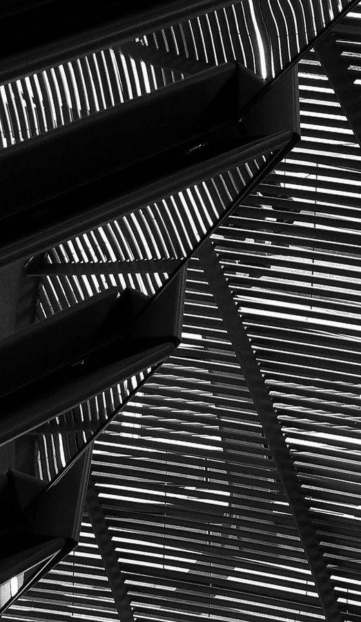 Lines of Light
