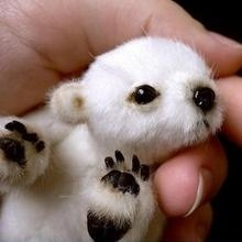 I don't know what the heck this is but I want one!