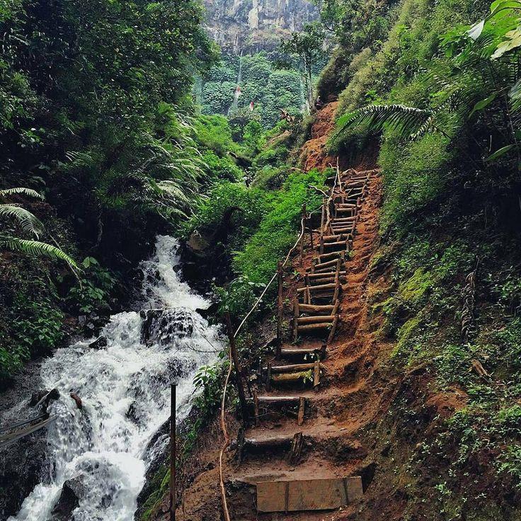 by @wulandarishevya Never stops giving up :) Location : Coban pitu, Malang ~ Indonesia Credit pic by @yogaoktaviananda