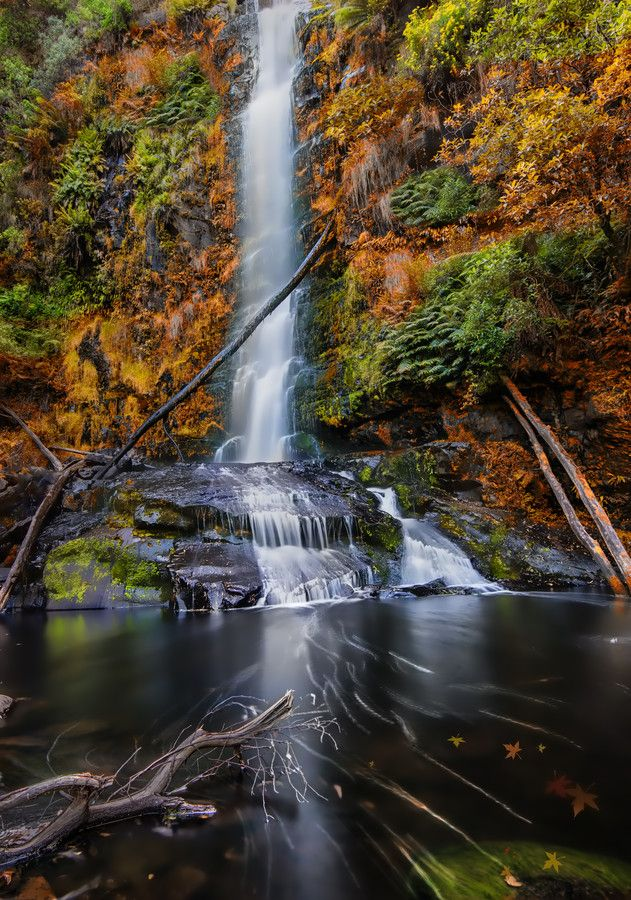 ~~Fall @ Fall ~ autumn waterfall, Melbourne, Australia by Bipphy Kath~~
