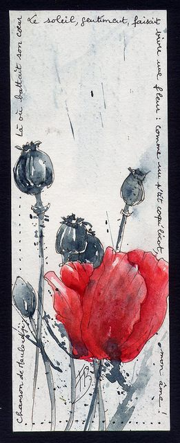 """""""Where her heart beat, the sun, friendly, made live a flower: as a small poppy, my soul!""""   Framboisine Berry via Flickr"""