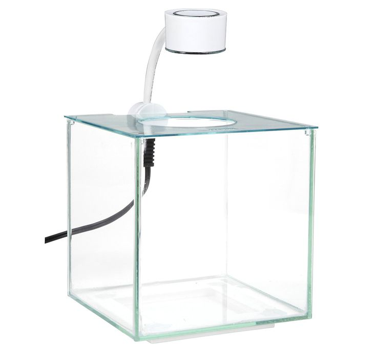 buy marina cubus glass betta kit 3 4l at online fish store. Black Bedroom Furniture Sets. Home Design Ideas