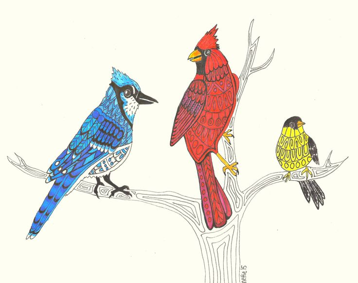 Bird Art Print, BlueJay Art, Cardinal Wall Art, Goldfinch Art, Birds at the Feeder Art Print, Birdwatchers Art, Three Birds by SeaMySoul on Etsy