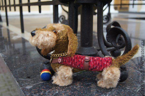Купить Такса жесткошерстная Тася - бежевый, такса, ошейник, мячик, жилетка, прогулка, веселая, собака