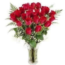 las flores mas lindas del mundo rojas - Buscar con Google