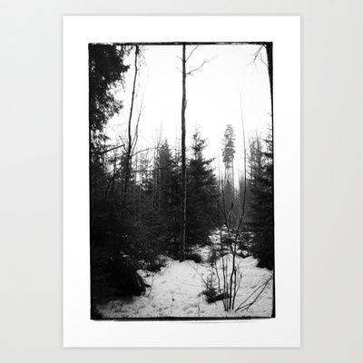 NORWEGIAN FOREST X Art Print by Plasmodi - $17.00