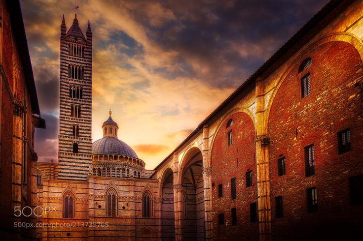 Catedral de Siena - La catedral de Siena (Duomo di Siena en italiano) es el templo principal y sede episcopal de esta ciudad italiana. Está dedicada a Nuestra Señora de la Asunción.