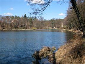 Chodzież - Jezioro Strzeleckie. Atrakcje turystyczne Chodzieży. Ciekawe miejsca Chodzieży