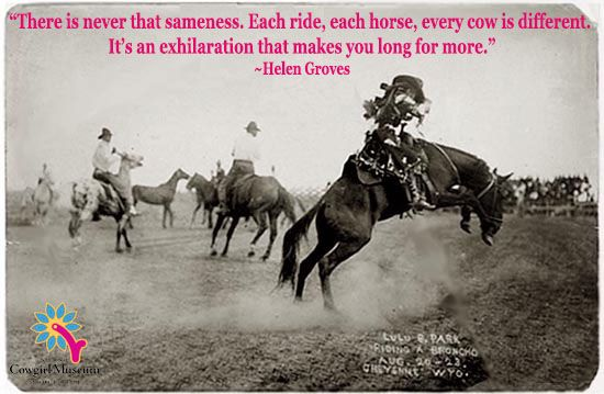 Foyer Museum Quotes : Best cute horse quotes ideas on pinterest