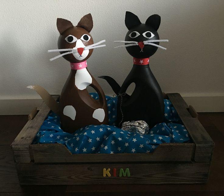 Katten / poezen surprise van lege wasmiddelflessen.