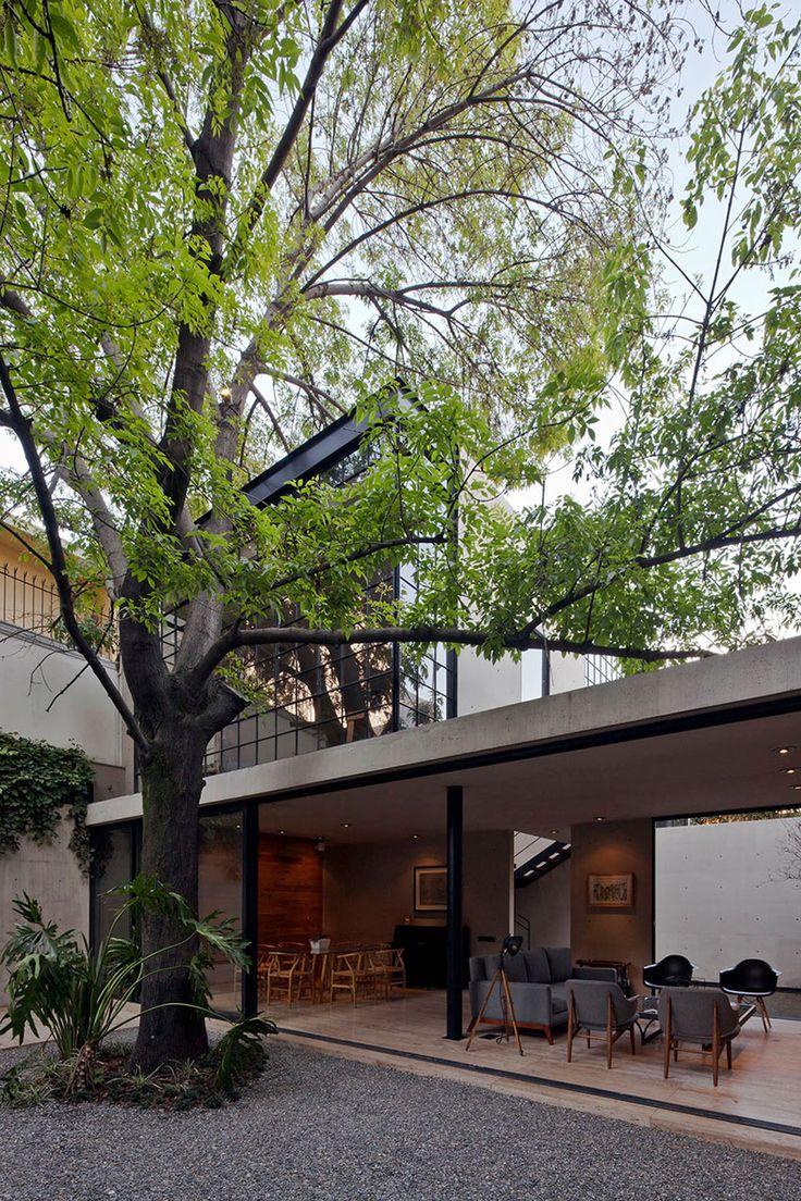 Casa Estudio Hill | Centro de Colaboración Arquitectónica #living #outdoorliving #courtyard