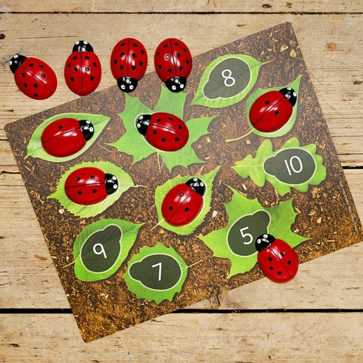 Early maths resource - ladybugs counting stones and activity cards for numbers 0-20