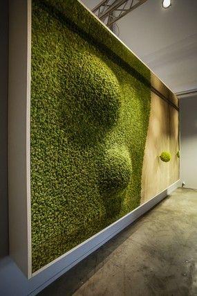 Best 20 Moss Wall Ideas On Pinterest Moss Wall Art