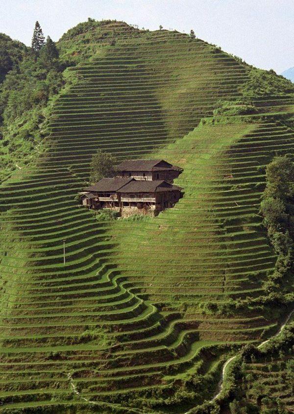 architecture japonaise intéressante