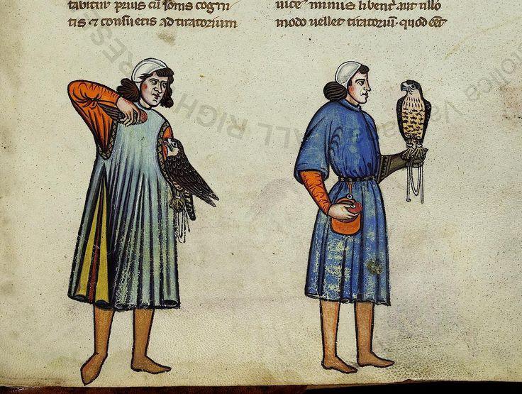 Falconry Book of Frederick II, 13c. Cut and processed by Anastasya Vorona http://www.pinterest.com/anastasyavorona/