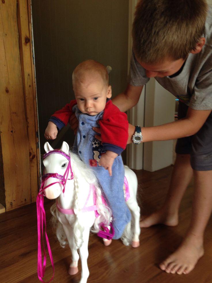Courage a fist horse back ride!   Horseback riding, Riding